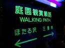 椿山荘の庭園を歩いてほたる鑑賞